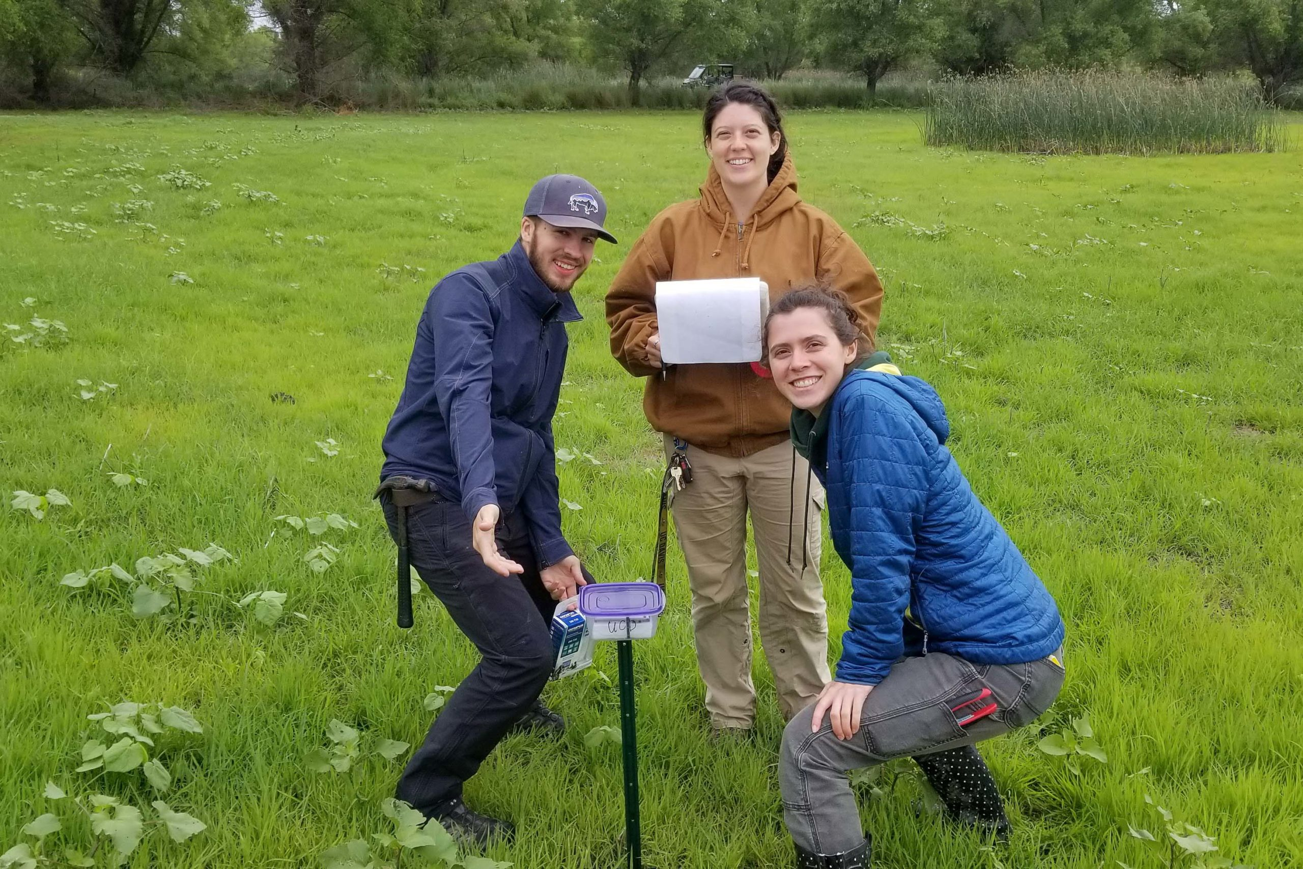 Danielle Fradet (with clipboard), Jacob McCafferty, and Lynette Williams setting up an audio recording unit in a marsh plot at Bird Haven Ranch; photo by Andy Engilis