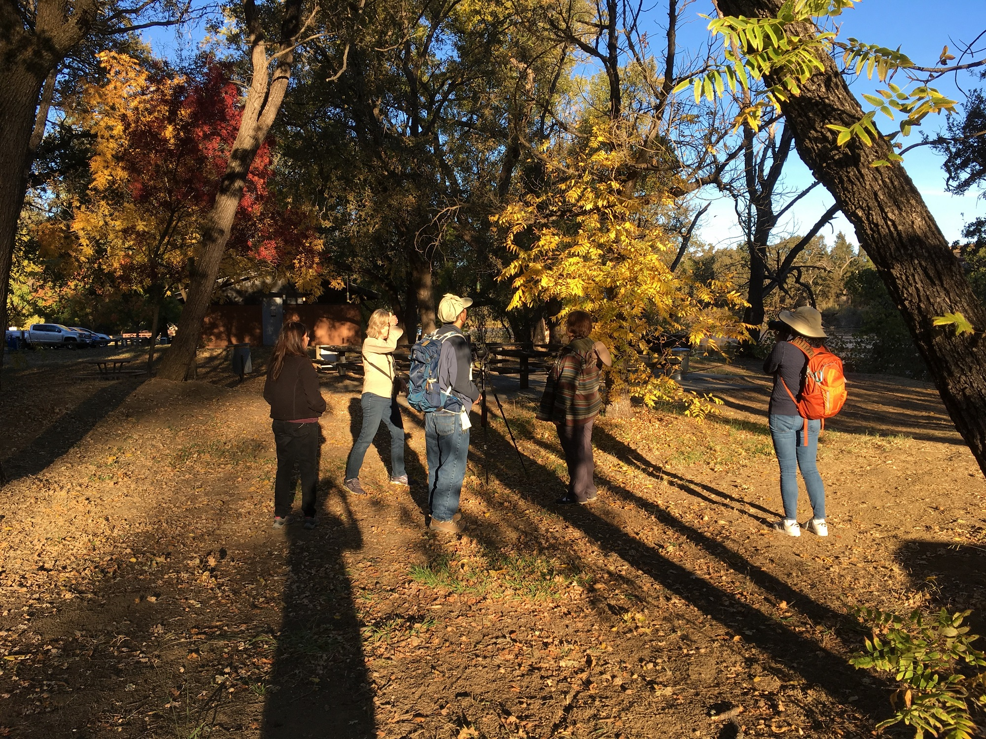 Field Trip Report: Lake Solano, Nov 3 2018