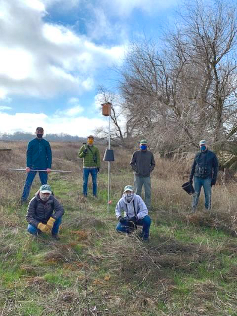 A network of nest boxes for Yolo County songbirds